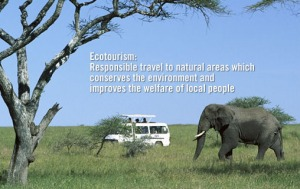 Greenhawks Ecotourism image